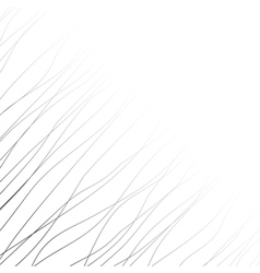 Background with black lines and curves vector image vector image