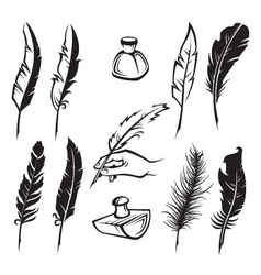 Feather pens vector