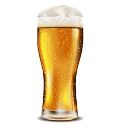 Beer glass with water drops vector image