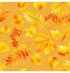 Swatch ready detailed seamless wet leaves vector