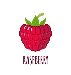 Raspberry icon in flat style on white background vector