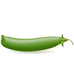 peas vector image vector image