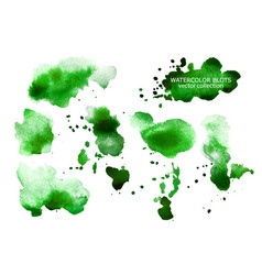 set of green watercolor spots isolated on white vector image