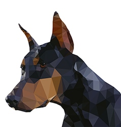 Doberman plain small vector