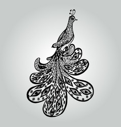 abstract doodle peacock wildlife collection vector image
