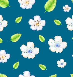 The pattern of apple flowers vector image