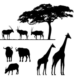 African animals vector silhouettes vector