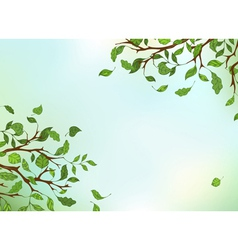Branches leaves and sky vector image