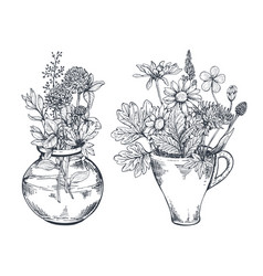 floral compositions with herbs and vector image