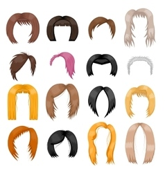 Wigs hairstyle vector image