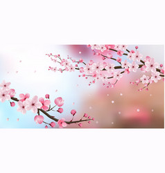Cherry blossom realistic blur background vector