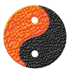 Yin and yang made of caviar vector