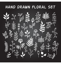 Set of hand-drawn floral elements with vector