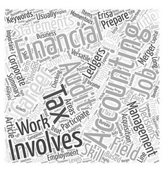 A Career In Accounting Word Cloud Concept vector image vector image