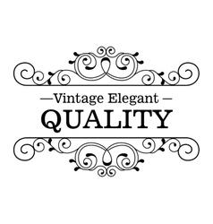 elegant quality frame design vector image