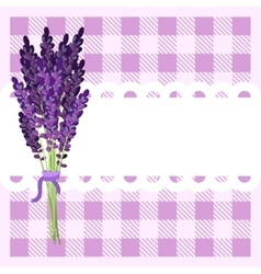 Bunch of lavender flowers on tartan backdrop vector image