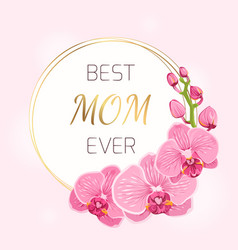 Mothers day card pink orchid flowers wreath spring vector