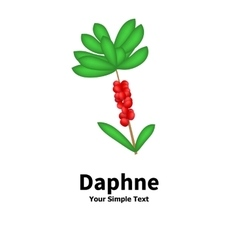 Plant with poisonous berries daphne vector