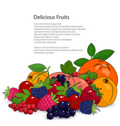 Poster juicy fruits and berries vector