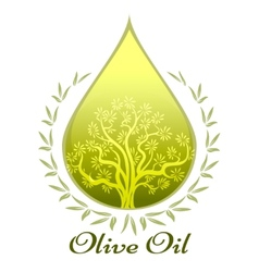 Olive oil label or emblem vector image