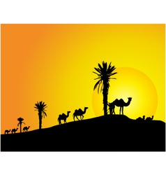 camel silhouettes vector image