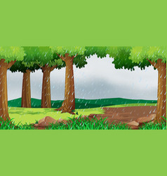 scene with raining in the park vector image