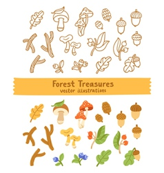Forest treasures vector