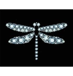 Diamond dragonfly vector