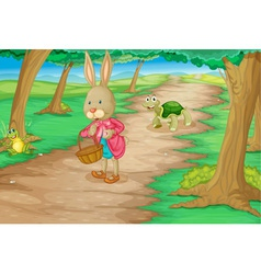 Rabbit in woods vector image vector image