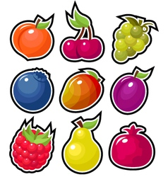 yummy fruits vector image vector image