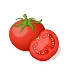 Tomatoes on a white background vector