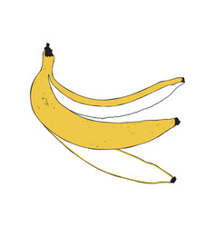 banana peel isolated vector image