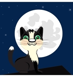 Cat on roof in the night vector