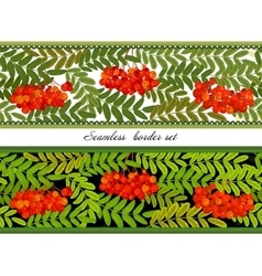 Border of bunches rowan and leaves seamless vector