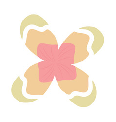 Flower natural botanical decoration icon vector