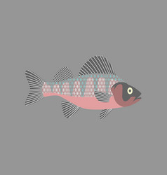 in flat style perch vector image