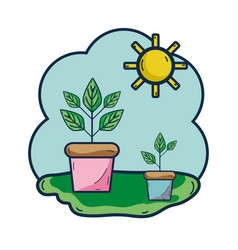 Plants inside of flowerpot with sunny weather vector