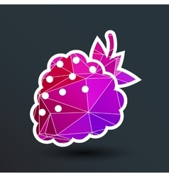 Raspberry logo template Abstract design vector image vector image