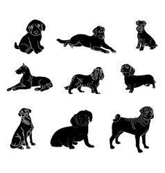 Silhouettes of dogs of different breeds vector