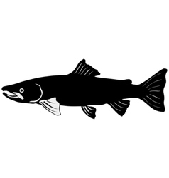 Silhouette of salmon vector