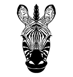 isolated head of striped zebra sketch vector image vector image