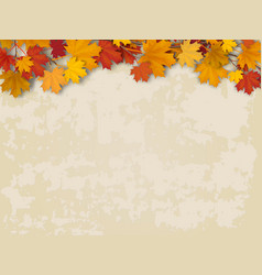 maple tree branch on old wall background vector image vector image