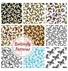 Butterflies and moth seamless patterns set vector