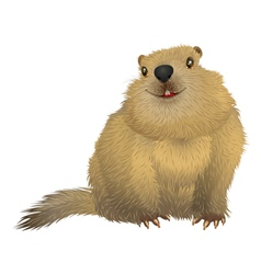 Groundhog day spring is coming vector