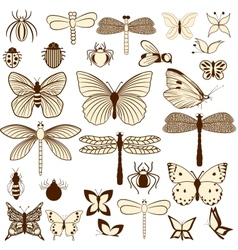 Set of stylized insects for decorating your work vector
