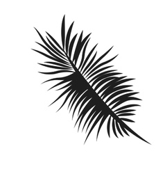 palm tree leaf icon vector image vector image