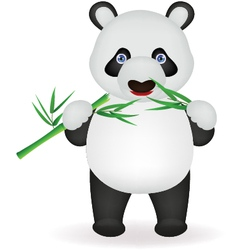 Funny panda eating bamboo vector