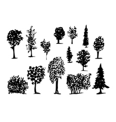 Coniferous trees silhouettes hand-drawn vector
