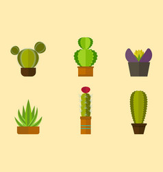 Cactus nature desert flower green mexican vector