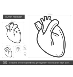 Human heart line icon vector